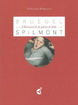 Pieter-Brueghel-l-excision-de-la-pierre-de-folie