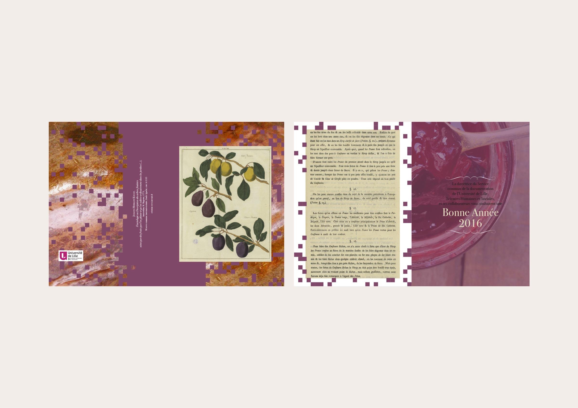 carte de vœux (4 pages – 15 x 21 cm – 2015)
